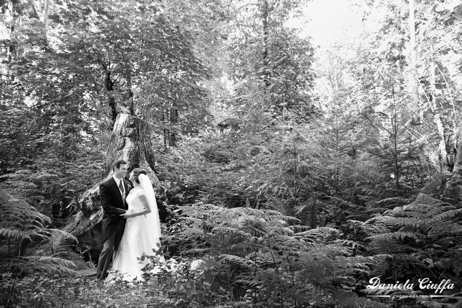 stanley park wedding photography